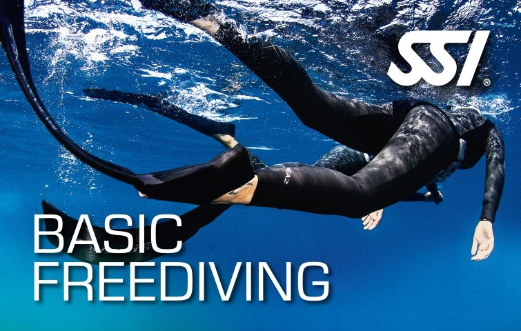 472517_Basic Freediving (Small)