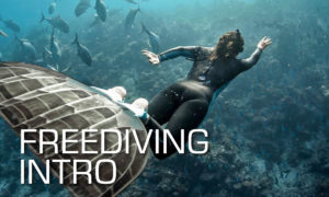 Freediving intro