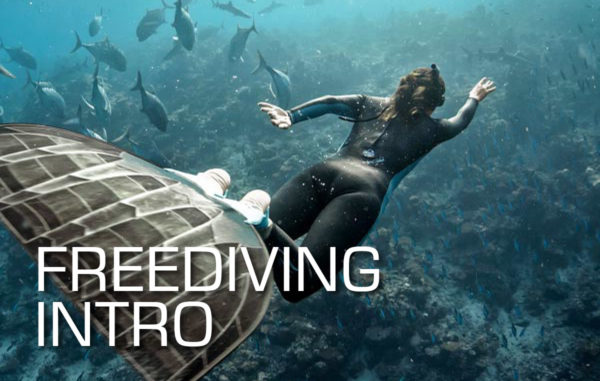 Freediving intro