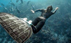 Nádechové potápění - Freediving